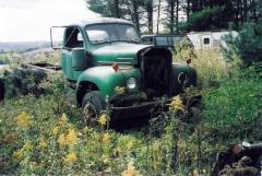 Green B.JPG
