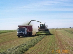 MR used as Silage Truck