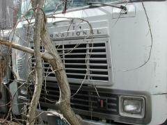 truck yard grave 038.jpg