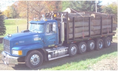 95 CH with E9 & Mack 12 speed (load of logs)