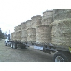 Mack CH with load of hay