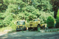 B81 & MC MACKS