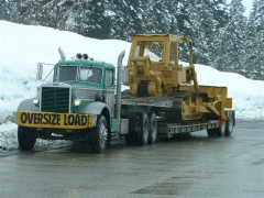 loaded For auction 006