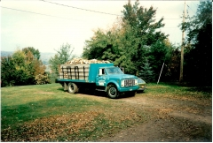 70 GMC 5500 Early 80's