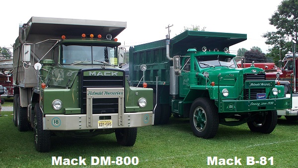 Dm 800 B 81 Jpg