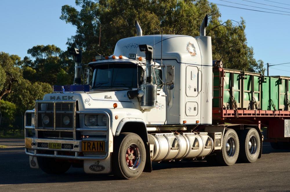 Aussie VL at work.jpg