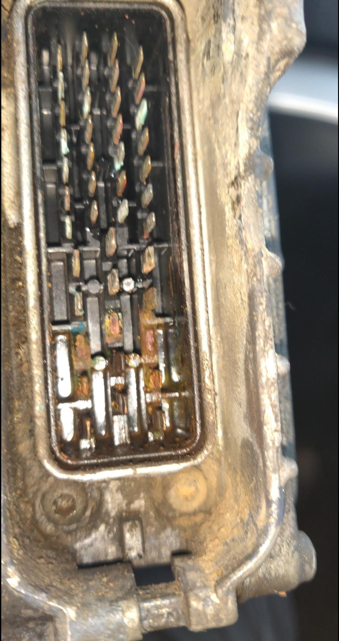 No throttle  Please help  - Electrical, Electronics and