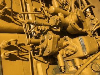 CFBD8CE2-AEA9-428B-95D2-F4D79093512A.jpeg.7ea3eb9ac96d379b55a5c822d0090dbf.jpeg