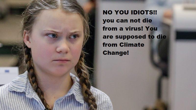 Greta_Thunberg_pissed-800x450.jpg.d142be134785e2bb6a2ac3949004d319.jpg